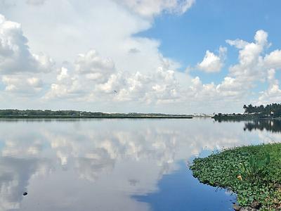 Bellandur on Cloud Nine: BDA invites bidders to prepare an action plan for rejuvenation of the lake
