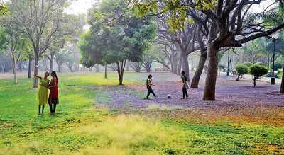 Tree of life, and of the world, in Bengaluru's Lalbagh soon