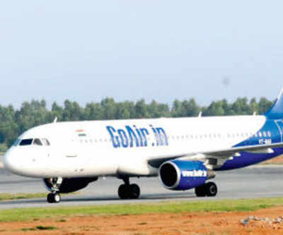 Second bird-hit in a fortnight at Ahmedabad airport