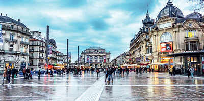 PLAN AHEAD: Lessons in French