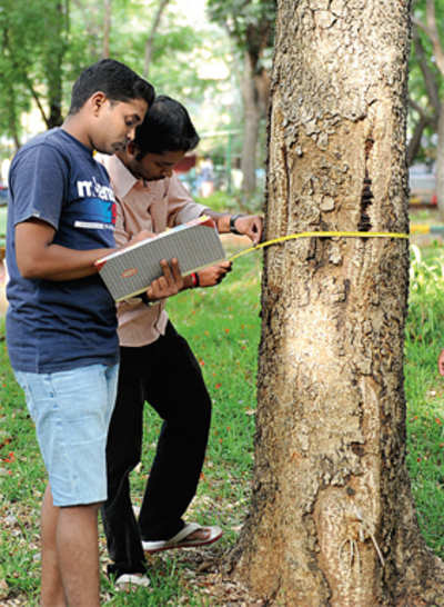 Citizens volunteer to count trees, debunk BBMP's growth story