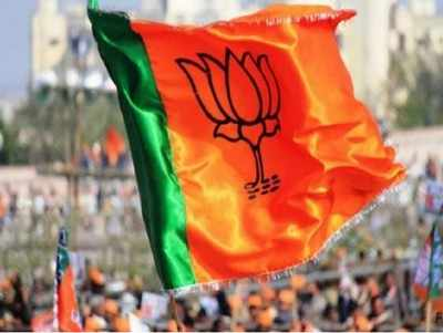 NCP's Maharashtra poll candidate, VBA leader and Congress MLA join BJP