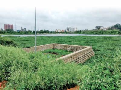 Bengaluru lakes are a cesspool of lies