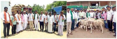 Karnataka Elections 2018: A sheep shot: Voters make generous offering of wealth