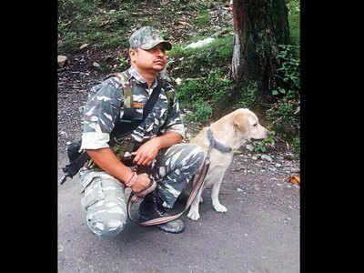 Alert CRPF canine saves man trapped under debris in JK