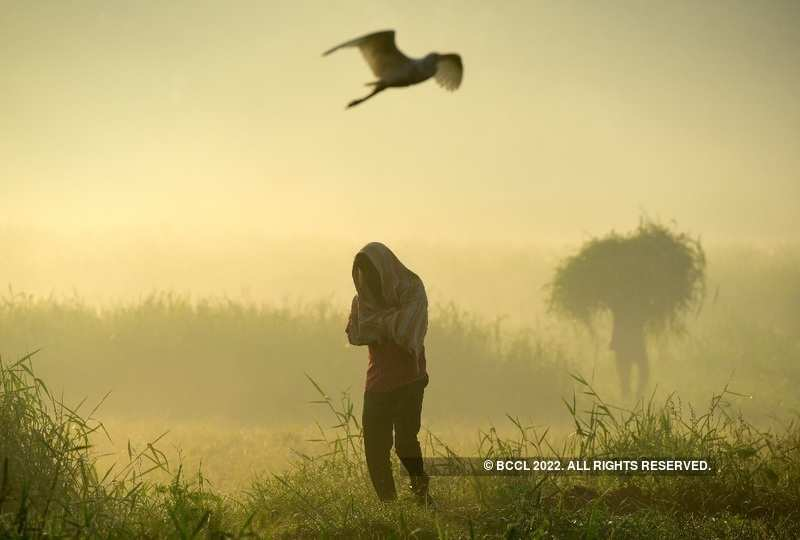 Mumbai witnesses season's lowest temperature on Monday