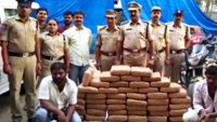 120kg Marijuana worth Rs 14 lakh seized in Telangana, two arrested