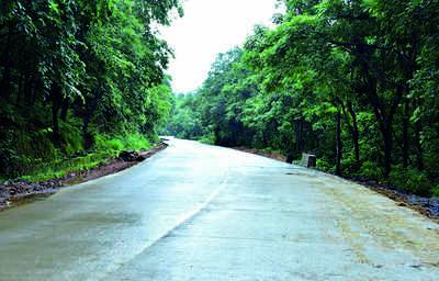 'Make Bengaluru-Mangaluru highway an express corridor'