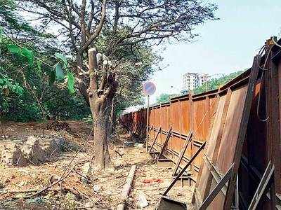Metro booked for cutting off tree branches in Thane, TMC lodges police complaint, cites HC order