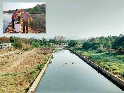 Residents 'adopt' Vitthalwadi river stretch, hyacinth cleared