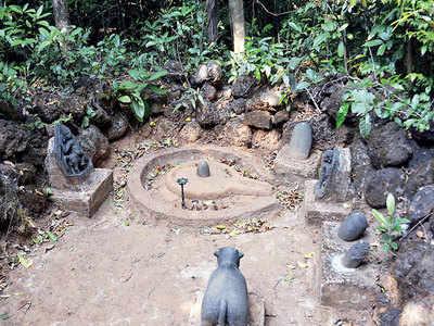 Legal guard bid for sacred groves