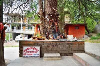 The Roadside Shrine