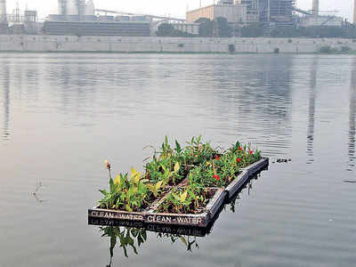 Ahmedabad gets its first floating garden