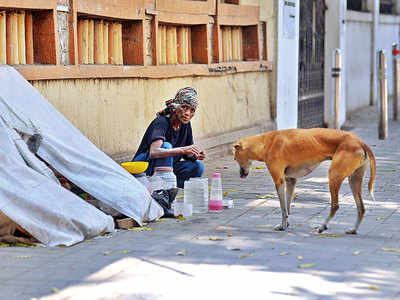 Homeless lady gets deserted pets after PMC picks up strays