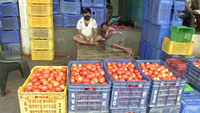 Tomato prices soar in Delhi over supply shortage, costing upto Rs 80/kg