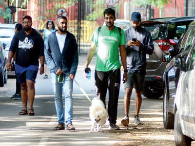 Cubbon Park getting ready to tell pet parents: Poochie poo in park? Clean up or stay out