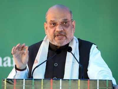 Amit Shah in Beed: You blessed us with 300 seats, we scrapped Article 370
