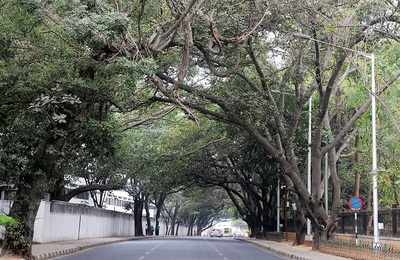 Enough is enough: Bengalureans reject 15-year master plan