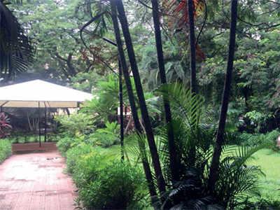 Versova residents' seven-month battle saves a garden