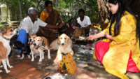 Special puja for pets ahead of World Animal Day 2019