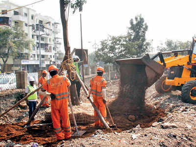 'MahaMetro has not planted enough trees'
