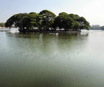 'Fishing in Ulsoor Lake is the only livelihood for us'