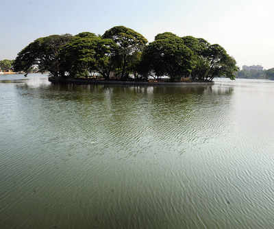 'Fishing in Ulsoor Lake is the only livelihood for us'