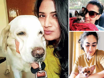 Versova couple faces eviction after daughter visits with pet dog