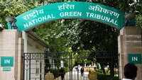 Submit report on 'Neela Hauz' lake: NGT directs DDA