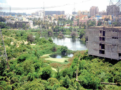 BBMP promise: 19 lakes to be revived by June