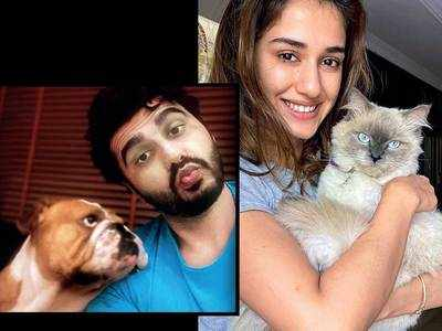 Of pet projects: Disha Patani, Arjun Kapoor, Huma Qureshi, Sanya Malhotra, Richa Chadha, Shruti Haasan, Amit Sadh sought succour in furry friends during the lockdown