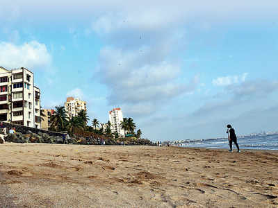 Putrid to pristine: Garbage at Versova beach halved