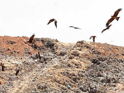 Yet another attempt to revive Mandur landfill