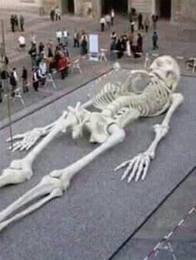 Fake News Buster: Giant skeleton of Goliath found in Jerusalem