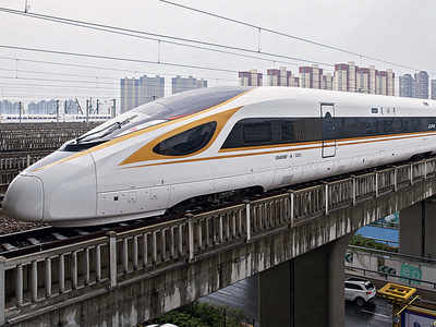 Bullet train will eat up forest land the size of 218 football fields