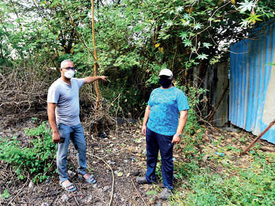 PMC's new garden has no entry road