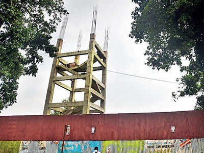 Govt plans forest museum at Aarey car shed