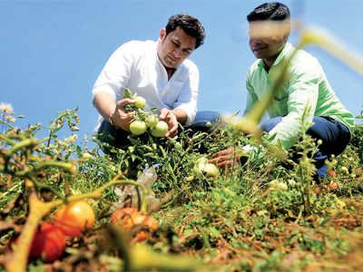 Here's how Rajesh Kumar aka Rosesh Sarabhai is turning Barma into a smart village