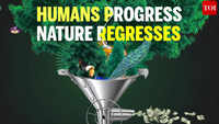 As humans have progressed, nature's regressed