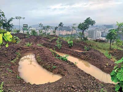 Trenches dug on tekdi prevent flooding across Baner-Balewadi-Aundh