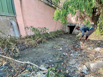 At Koramangala CCC, mosquitoes, dengue come free