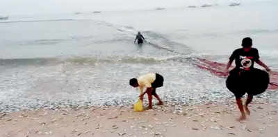Windfall for fishermen in DK, Udupi districts