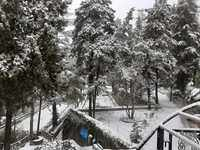 'Queen of hills' Mussoorie turns white after fresh snowfall