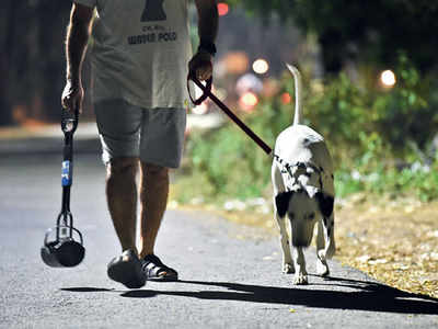 Is PMC's action justified against pet owners who don't clean their pets' poop in public?