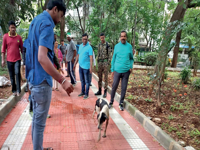 Dog rescued out of open recharge pit inside park