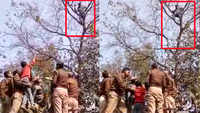 Lucknow: Man climbs atop tree near UP CM's residence, threatens to kill self