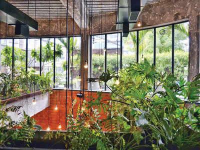 PLAN AHEAD: Start a kitchen garden