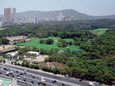 Tree Authority says yes to cutting 2,702 trees in Aarey