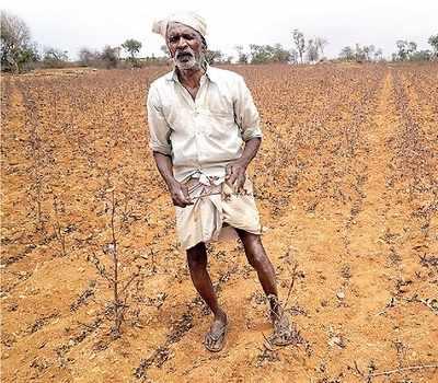 After floods, Karnataka stares at drought