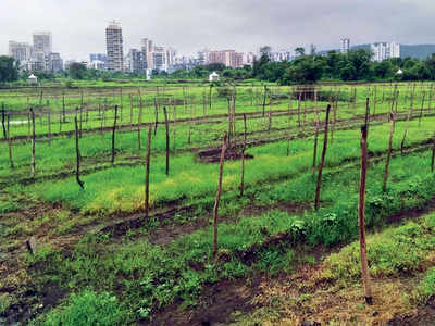 New judge for Kharghar land deal inquiry